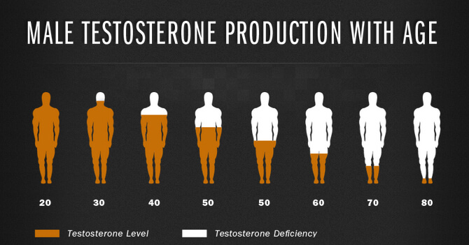Mechanism of testosterone boosters